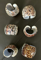 Lot Set of 6 Real Natural Sea Shell Tiger Leopard Cowrie Napkin Rings Holders