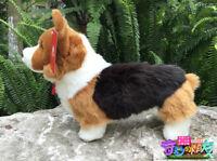 "Corgi dog puppy plush toy stuffed animal kids birthday christmas gift 33cm 13"" A"