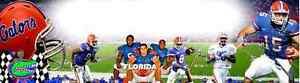 """SPORTS"" ""FLORIDA GATORS"", ART/POSTER /BANNER/PICTURE  30""X8.5"""