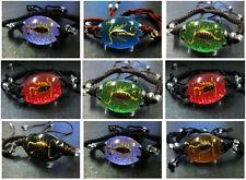 wholesale 18pcs fashion insect real golden scorpion-king magic handmade bracelet