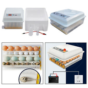 Egg Hatcher Machine 16/36 Eggs Digital Mini Automatic Incubators with Turner