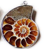 Popular Best Christmas Gfit Retro Natural Ammonite Fossil Gems Silver Pendant