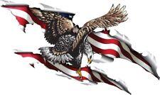 Eagle in flag rip patriotic  hood decal 28 X 48