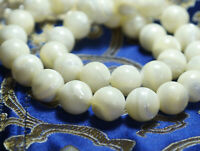 10PCS 100% Natural Tibetan Clam Conch Shell Loose Round Beads 12-13mm
