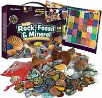Mega Rock Fossil Mineral Collection Activity Kit. Includes 250+ Real Specimens