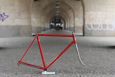 Pinarello Frame / 54cm / 2.493g / Campagnolo Columbus SL Super Fork Pegoretti