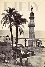 PLAQUE ALU DECO PHOTO FRANCIS FRITH VUE DE GIRGEH 1857 ANIMAUX CHEVRES BATIMENT