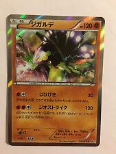 Pokemon Card / Carte Zygarde Promo Holo 251/XY-P