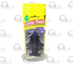 Little Trees Hanging Car and Home Air Freshener, Bold Embrace (Pack of 24)