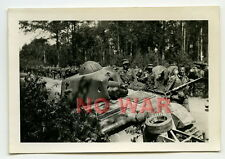 WWII ORIGINAL GERMAN WAR PHOTO KNOCKED FRENCH TANK & SOLDIERS