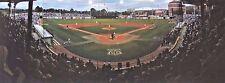 """Alex Box Stadium"" by Steve Franz (Signed by Paul Mainieri)"