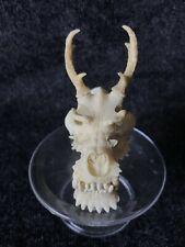 CAPSULE Q MUSEUM Kaiyodo The 12 Chinese Zodiacs Skull DRAGON Skull Mini Figure
