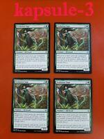 4x Evolution Sage | War of the Spark | MTG Magic Cards
