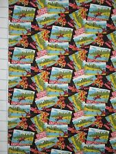 NATIVE AMERICAN INDIAN SOUTHWEST Scenes Quilt Cotton Fabric ~ Sold by ½ YARD