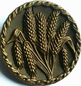 "Vintage Wheat Button, 1 pc Brass Design & Rim on Tinted metal, German BM 1 1/4"""