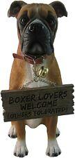 More details for boxer dog 14