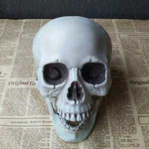 Halloween Haunted House Dress Up Plastic Skull Skeleton Ghost Tricky Props #7