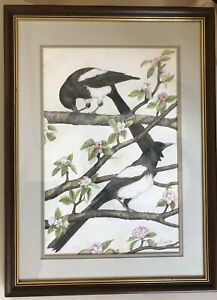 """Framed Original Signed Coloured Pencil Picture of Magpie Birds """"Two for joy"""""""