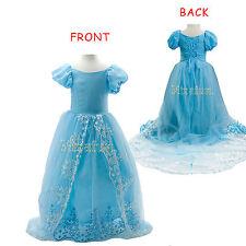 Unbranded Tulle Fancy Dresses for Girls