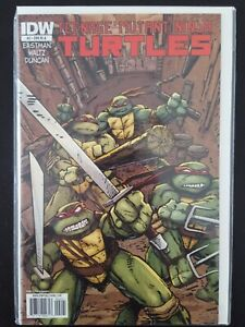Teenage Mutant Ninja Turtles IDW #2 RI-A Eastman Cover Art 9.0