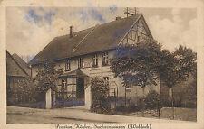 Ak, Ansichtskarte, Pension, Sachsenhausen, Waldeck, (N)1503
