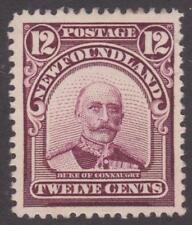 Newfoundland 1911 #113 Royal Family Issue (Duke of Connaught) - VF MH