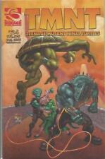 TMNT TEENAGE MUTANT NINJA TURTLES (2001) #24 - Back Issue (S)