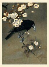Koson Crow & Blossom Large Poster Art Print Lf3769