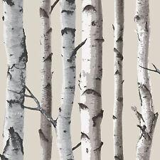 Décor Fin Bouleau Arbres 10m Papier Peint - Blanc et Argenté Neuf