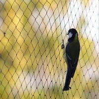 5X5m Anti Oiseaux Filet Vert Jardin Pour Protezione Vegetali Piante haut