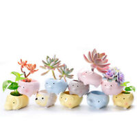 Cartoon Animal Shape Planter Ceramic Flower Pot Succulent Plant Flowerpot Bonsai