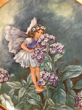 FLOWER FAIRY PLATE HELIOTROPE VILLEROY & BOCH by CICELY MARY BARKER