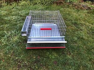 Quail cage , Coming With Waste Tray,Feed Tray,WaterTray, Roll eggs try