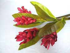 """38"""" Tropical Bromeliad Artificial Flowers Stems Burgundy Pack of 4, New"""