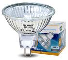 MR16 Halogen Light Bulbs 5W 10W 20W 35W 50W 12V Low Voltage GU5.3 50mm Spotlight