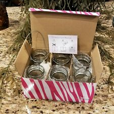 New PINK ZEBRA Home Decor Glimmer Mason Jar Petites Glass Jars 6 Pack