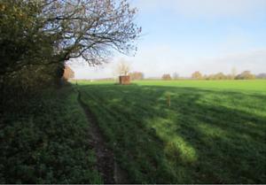 Plot of Land for sale in England ~  Stuminster Plot C2