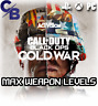 CALL OF DUTY COLD WAR INSTANT MAX WEAPON LEVELS