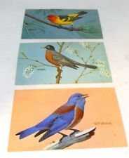 Three National Wildlife Federation WEBER BIRD Postcards