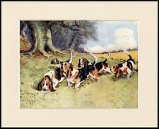 BASSET HOUND PACK GREAT DOG PRINT MOUNTED READY TO FRAME