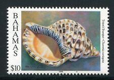BAHAMAS 1996 Muschel Shell $10  914 JZ 1996 ** MNH