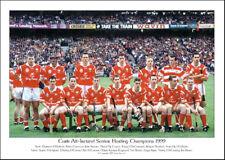 Cork All-Ireland Senior Hurling Champions 1999: GAA Print