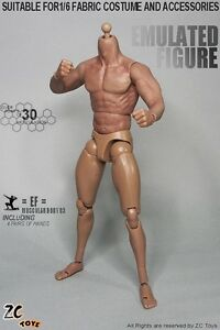 "1/6 Scale ZC Toys 3.0 Muscular Male Figure Body Seamless Arms For 12"" Hot Toys"