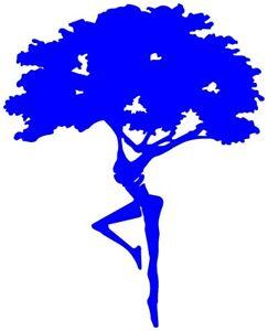 Fire Dancer Dreaming Tree Dave Matthews Band Decal Vinyl