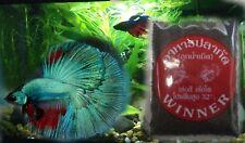 Betta Food Wnner super premium mosquito larvae granule for tropical fishes 10 g.