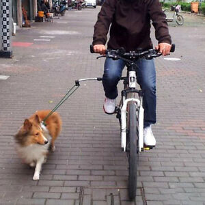 Dog Leash Bicycle Run Exercise Hands Free Accs Lead Rope Adjustable 40-115cm