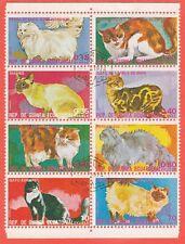 GUINEA ECUATORIAL - Bustina 8 francobolli serie ANIMALI, GATTI