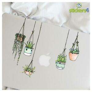Set of 5 Illustrated Hanging Plants/Potted Plant Stickers (Laptop/Fridge/Book)