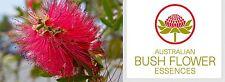 FIORI AUSTRALIANI Bottlebrush DIFFICOLTA NEI CAMBIAMENTI-LEGAME MADRE/Serenità