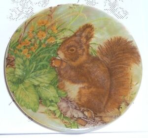 """Adorable Squirrel Eating on Mother of Pearl MOP Shank Button - 1-3/8"""""""
